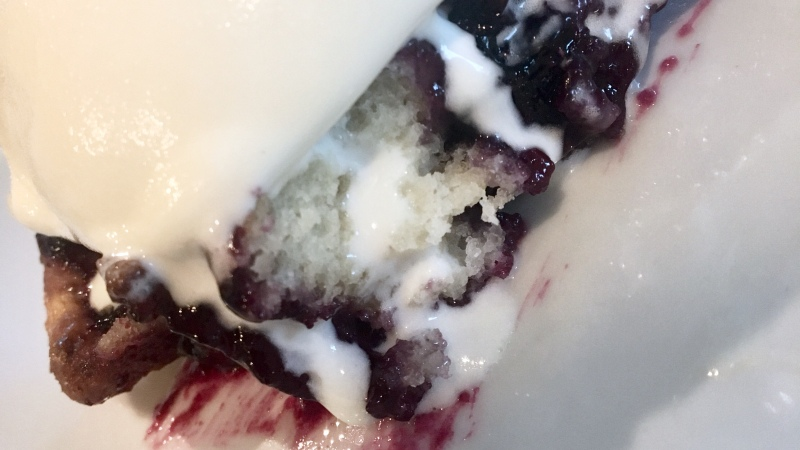 Fresh Picked Blueberry Cobbler